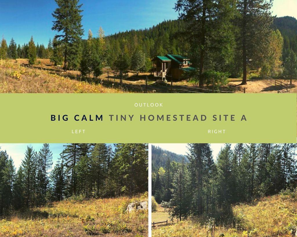 Big Calm Tiny Homesteads site A photos