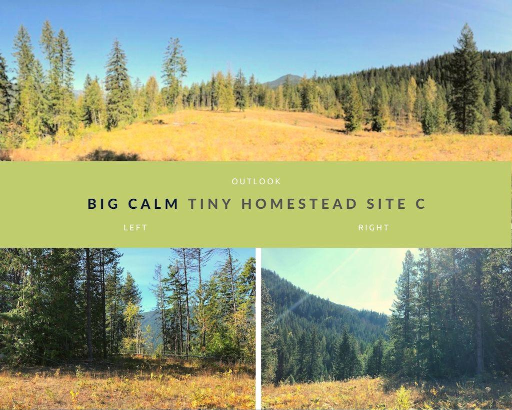 Big Calm Tiny Homesteads site C photos