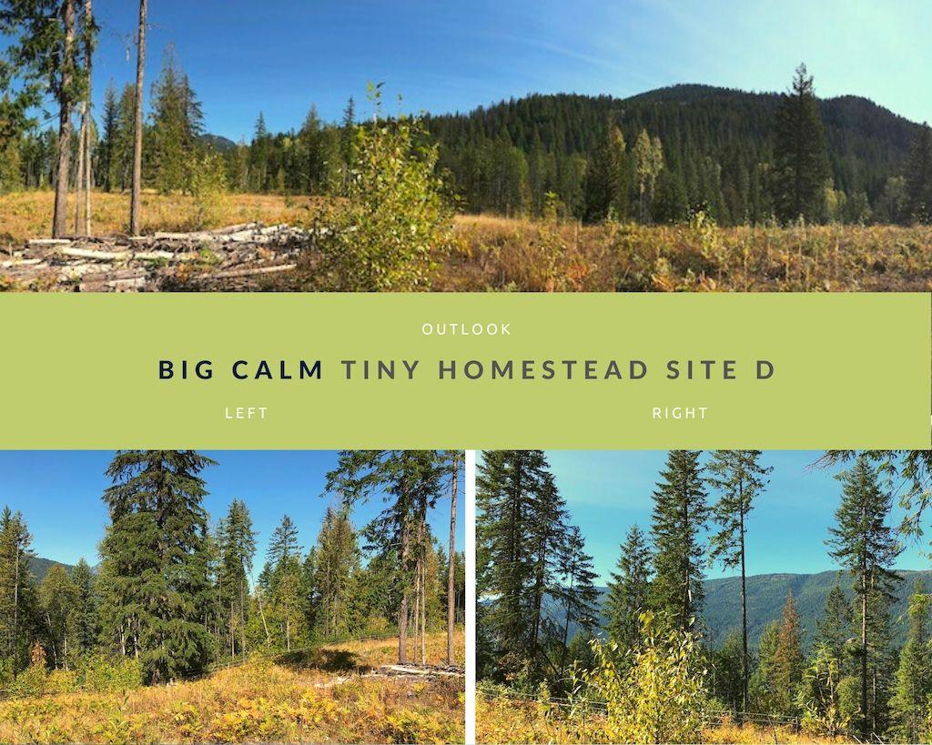 Big Calm Tiny Homesteads site D photos