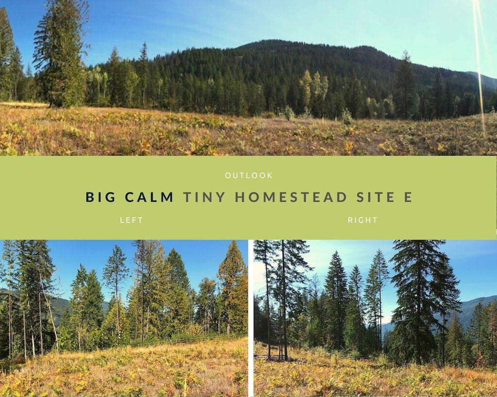Big Calm Tiny Homesteads site E photos