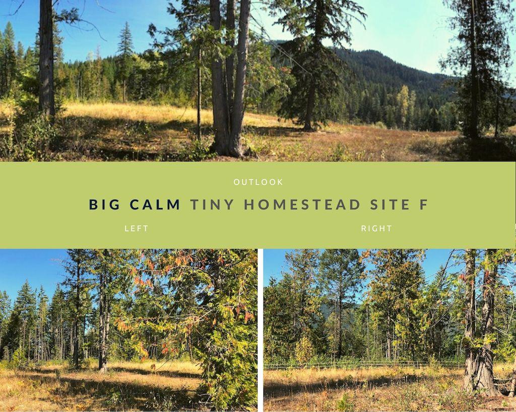 Big Calm Tiny Homesteads site F photos