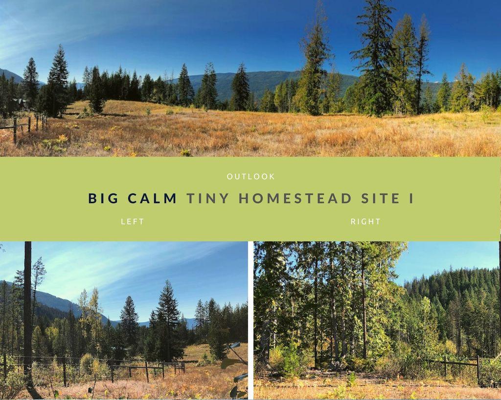 Big Calm Tiny Homesteads site I photos